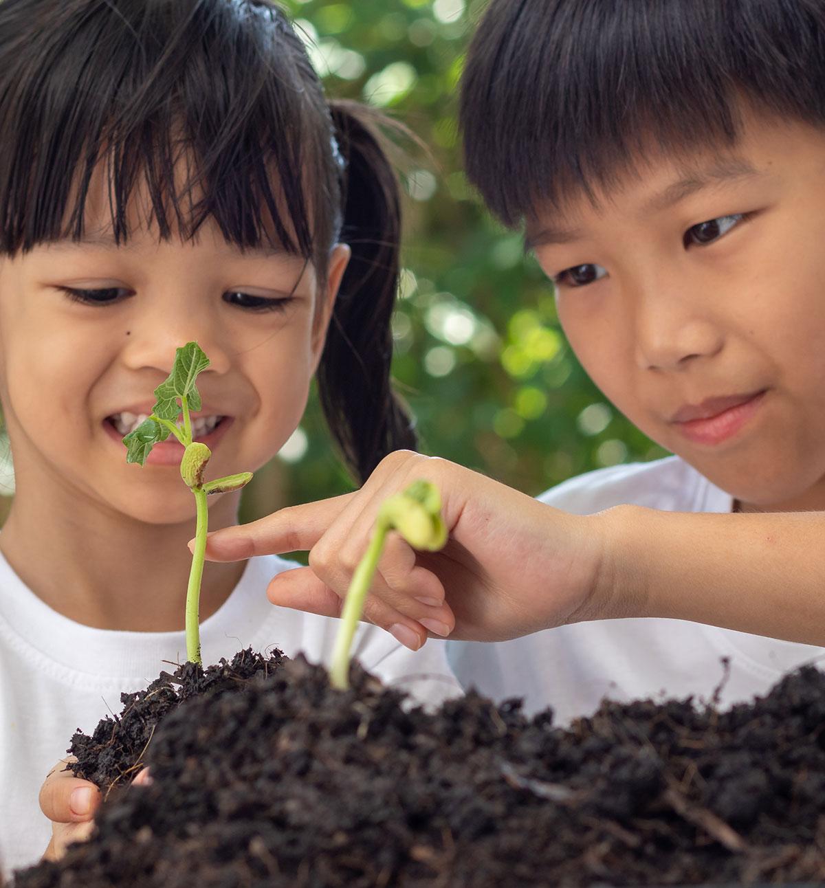 B4School FUN - Alphabet Adventure - G is for Garden